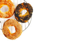 Poppy and sesame bagels on the grill isolated Royalty Free Stock Images