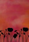 poppy sylwetka kwiat ilustracji