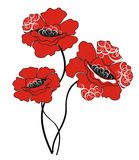 Poppy. Vector illustration Royalty Free Stock Photography