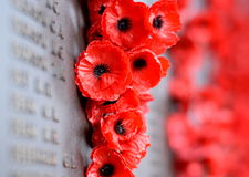 Poppy wall lists the names of all the Australians who died in service of armies Stock Photography