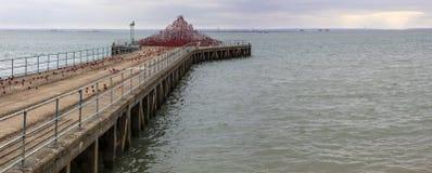 Poppy Wave en el Southend-En-mar Fotografía de archivo libre de regalías