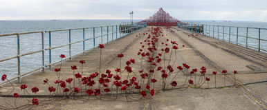 Poppy Wave at Southend-On-Sea. SOUTHEND-ON-SEA, UK - APRIL 16TH 2017:  The Poppy Wave installation by Paul Cummins and Tom Piper on Barge Pier in Shoeburyness Stock Photo