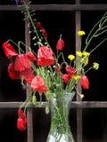 Poppyflowers in een glasvaas Stock Afbeelding