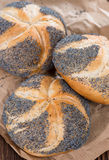 Poppyseed Buns Royalty Free Stock Photos