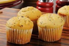 Free Poppyseed Muffins Royalty Free Stock Photo - 33309595