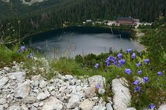 Popradske Mountain Lake, chalet on the lake, photographed from above royalty free stock photo