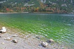 Popradske pleso - tarn in High Tatras, Slovakia Royalty Free Stock Photography
