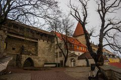 Poprzedni więzienia wierza Neitsitorn w starym Tallinn, Estonia Dziewczyny wierza obraz stock