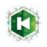 Poprzedzającej szlakowej ikony rośliien wzoru zieleni sześciokąta kwiecisty guzik ilustracji