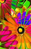 Popsicle daisy. Hand painted daisy design with colorful rainbow shades Stock Photos