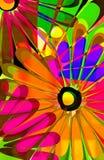 Popsiclegänseblümchen Stockfotos