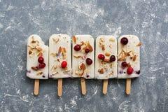 Popsicles мороженого клюквы в ряд на серой предпосылке со свежими ягодами и гайками Взгляд сверху, плоское положение стоковое изображение rf