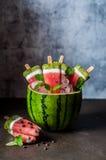 Popsicles арбуза, кокоса и кивиа Стоковое фото RF