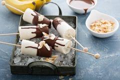 Popsicles банана и шоколада Стоковые Изображения RF