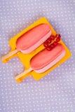 2 popsicles в прессформе с красными смородинами Стоковое фото RF