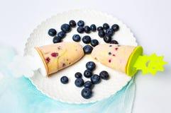 Popsicles плодоовощ голубики с свежими ягодами Стоковые Изображения RF