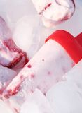 Popsicles. Homemade popsicles on ice cubes stock images