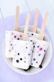 Popsicles from yogurt and berries Stock Photography