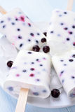 Popsicles from yogurt and blueberry Royalty Free Stock Image
