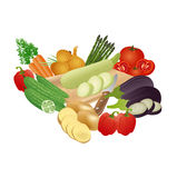 Populär grönsakvektoruppsättning, illustration Royaltyfri Foto
