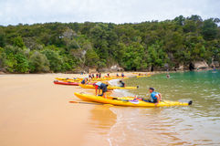 Populär kayaking destination i Abel Tasman National Park Arkivfoto