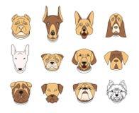 Populära avel av hundkapplöpning 12 linjära färgrika symboler på vit Arkivfoto