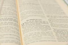 Populäre Bibeldurchführung für St.-Valentinstag und -hochzeit Lizenzfreie Stockfotos