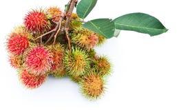 Populäre Frucht des Rambutan von Thailand lizenzfreies stockfoto
