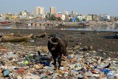 População de Mumbai Foto de Stock Royalty Free