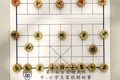 Populair Chinees schaakspel royalty-vrije stock foto