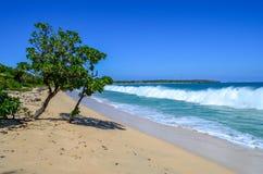 Populair Natadola-Strand, het Eiland van Viti Levu, Fiji stock afbeeldingen