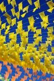 Populaire partij in Brazilië Stock Afbeelding