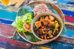 Popular Balinese meal of rice with variety of side dishes which are served together with the rice and more as optional extras stock photography