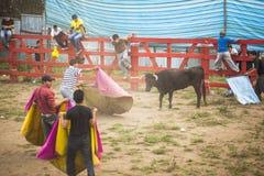 Popular bullfights (Toros de Pueblo) Royalty Free Stock Image