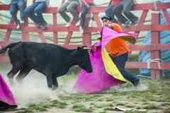 Popular bullfights (Toros de Pueblo) Royalty Free Stock Photos