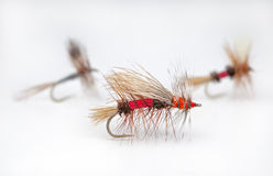 Popular dry flies Stock Photography