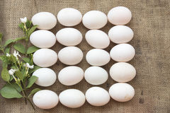 Popular foods eggs raw on old sack. Popular foods eggs duck and chicken raw prepare to cook on old sack Royalty Free Stock Photos