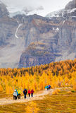 Popular Hiking Trail in the Canadian Rockies Royalty Free Stock Images