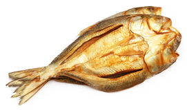 Popular Ilish fish dried Stock Photography