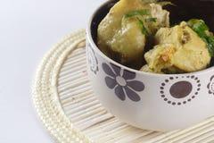 Popular indonesian food, opor Royalty Free Stock Photos
