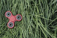 Popular red spinner gadget in 2017 against the background of green grass.  stock photo