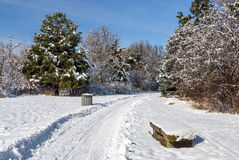 Popular ski and walking trail with stone bench Stock Images