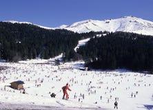 Popular skiing Royalty Free Stock Photos