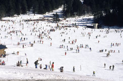 Popular skiing Stock Photo