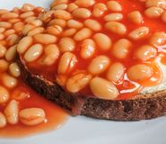 Freshly prepared plate of Beans On Toast seen on a table. Royalty Free Stock Photo