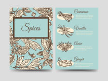 Popular spice flyers template vector illustration