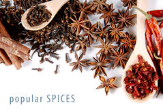 Popular spices Stock Images