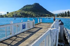 A view of Pilot Bay and Mount Maunganui, New Zealand royalty free stock photography