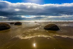 The popular tourist attraction. Boulders Moeraki - a group of large spherical boulders on the beach Koekokhe. Travel to New Zealand. Ocean evening tide. The stock photo