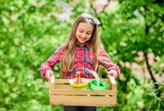Popularna ogrodowa opieka Sprawdza ogrodowego dziennego punktu insekta kłopot wcześnie Uprawiać ogródek klasy Ekologii edukacja b obrazy stock
